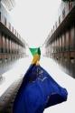 BRA54. SAO PAULO (BRASIL), 17/06/18. - Los residentes de un conjunto de edificios en Sao Paulo sacuden este domingo 17 de junio una bandera gigante de 63 metros de altura y 17 de ancho para conmemorar el juego de estrenos de la selección brasileña en la Copa del Mundo de Rusia. La bandera forma parte de una tradición que cumple 20 años. EFE/Marcelo Chello